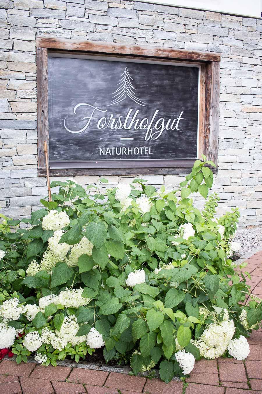 Forsthofgut-13